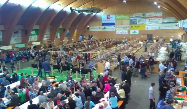 Impressionen Markthalle Toggenburg